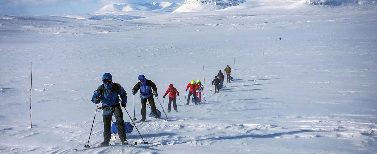 Fińska wyprawa na nartach typu backcountry z pulkami fot. © Mateusz Kuszela, Batents.pl