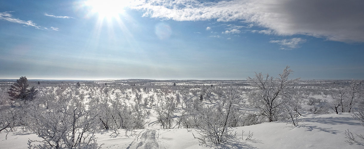 Lapland: cross-country skiing in the land of the Sami people © Mateusz Kuszela, Barents.pl