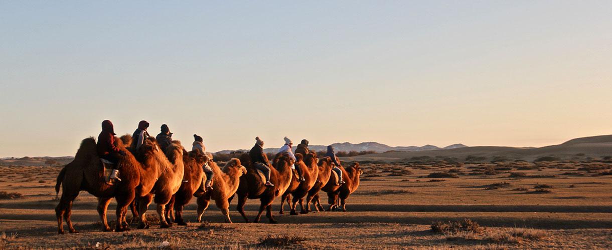 Wyprawa do Mongolii. Przez zielony step i dalekie pustynie. Fot. © Lokalni partnerzy Barents.pl