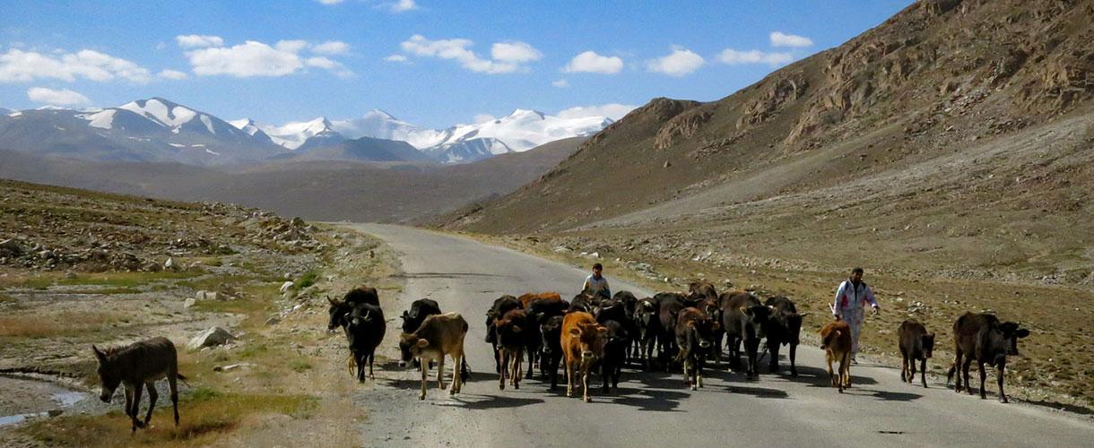Trekking w Pamirze. Wycieczka do Tadżykistanu fot. © Roman Stanek, Barents.pl