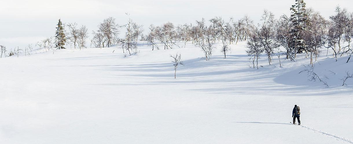 Szwecja: tygodniowy obóz na biegówkach w Dolinie Ljungdalen fot. © Jon Flobrant
