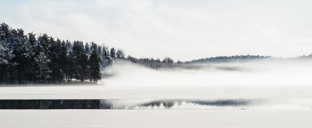 Szwecja: tygodniowy obóz na biegówkach w Dolinie Ljungdalen fot. © Anders Nord