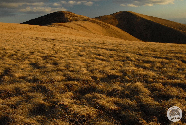 wandering through the ukrainian highlands of