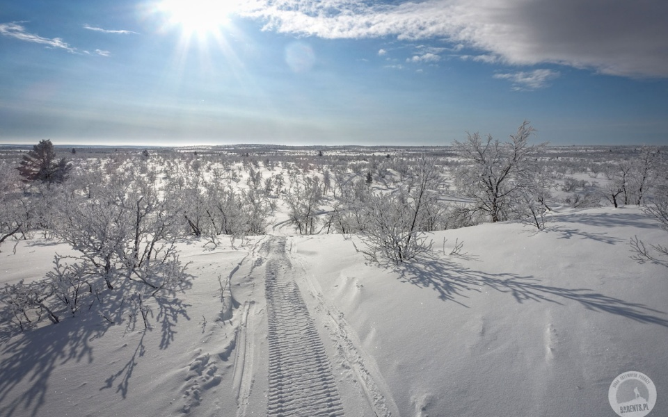 Laponia: raj dla biegaczy, kraina lodu i ciszy fot. © Mateusz Kuszela, Barents.pl
