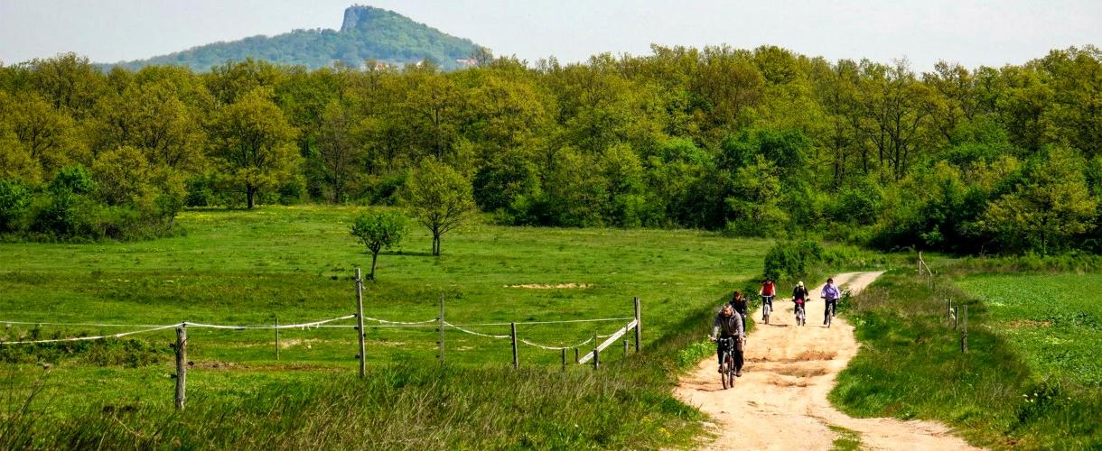 Tapolca. Rowerem nad Balatonem. Kwiecień 2014 fot. © Roman Stanek, Barents.pl