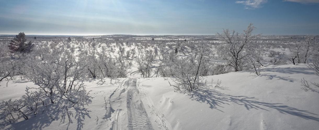 Kalottireitti: wzdłuż arktycznego szlaku. fot. © Mateusz Kuszela, Barents.pl