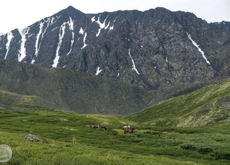 Trekking po najładniejszych górach Syberii. Ałtaj 2019 r. fot. Mateusz Kuszela, Barents.pl