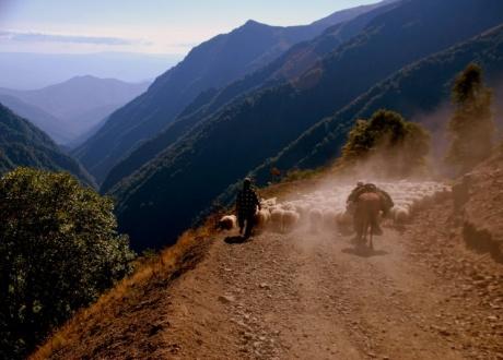 Gruzja: Trekking w Tuszetii i Chewsuretii © fot. Roman Stanek, Barents.pl