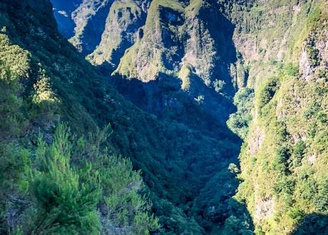 Wycieczka Madera: spacery lewadami i zwiedzanie wyspy wiecznej wiosny! fot. © Helena Drózdż z Barents.pl