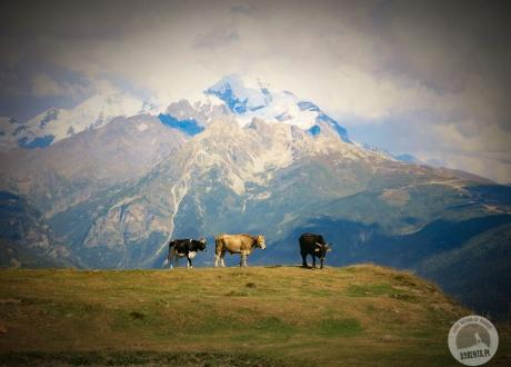 Gruzja: Trekking w Swanetii © fot. Roman Stanek, Barents.pl