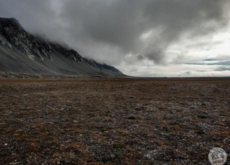 Fotorelacja z sierpniowego trekkingu arktyczna tundrą 2018 fot. © Dominik Pytel z Barents.pl