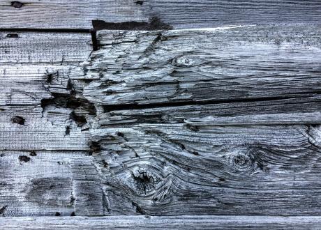 Ślady po kulach w budynku telegrafu. Osada Calypsobyen fot. © Małgosia Busz, Barents.pl