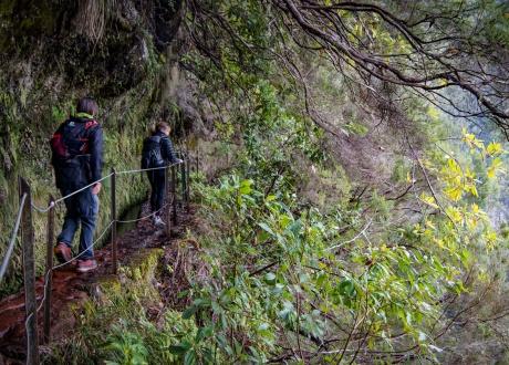 Madera: spacery lewadami i zwiedzanie wyspy wiecznej wiosny! Fot. © Małgosia Busz, Barents.pl