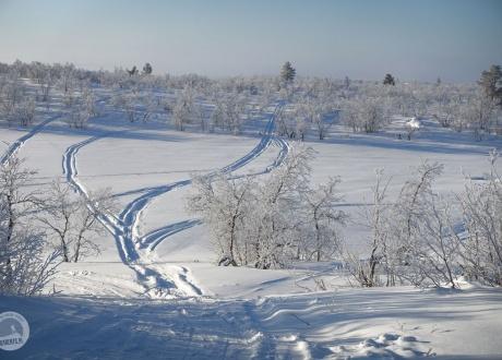 Będziemy przemierzać na nartach bezdrzewne wzgórza, przełęcze, doliny, przecinać zamarznięte jeziora. fot. © Mateusz Kuszela, Barents.pl