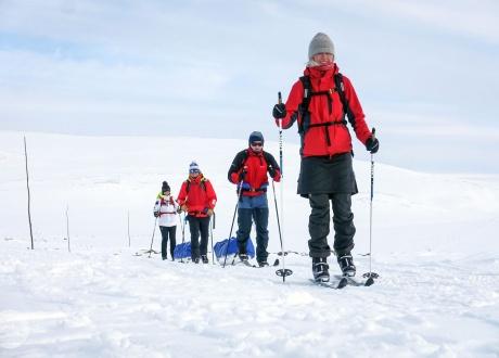 Laponia: na biegówkach w krainie Saamów w 2018. fot. © Mateusz Kuszela, Barents.pl