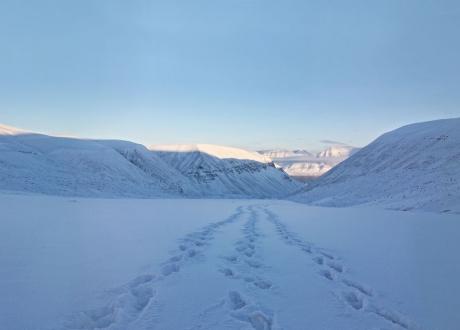 Arktyczna majówka na Spitsbergenie fot. © Martin Fiala, Barents.pl