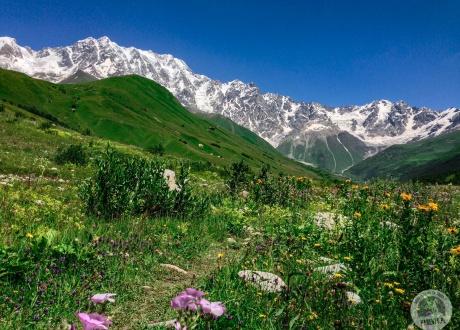 Spacery swańskimi dolinami. Gruzja i Armenia: to co najlepsze z Kaukazu. © Klemens, Barents.pl 2017