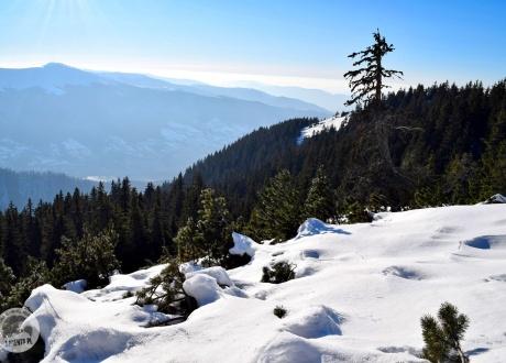 Pożegnanie zimy na ukraińskim Zakarapaciu fot. Ivo Dokoupil dla Barents.pl