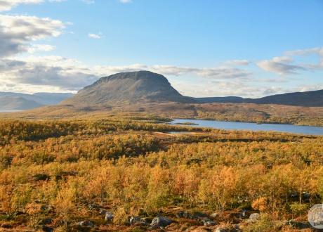 Finlandia: trekking na Halti przez jesienną tundrę Laponii © fot. Suvi-Mansikkasalo dla Barents.pl