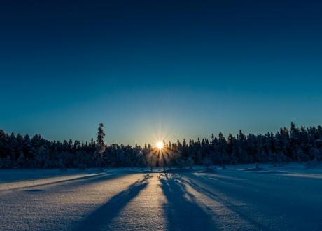 Szwecja: tygodniowy obóz na biegówkach w Dolinie Ljungdalen fot. © Ted Logart
