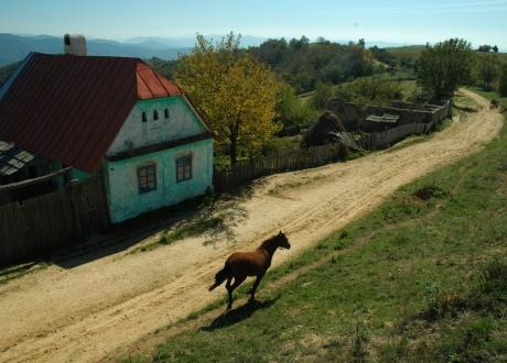 Romantyczna majówka w Rumunii z Barents.pl. fot. Ivo Dokoupil, Barents.pl